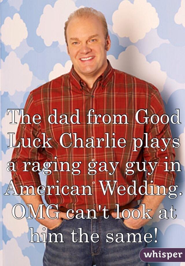 american wedding gay guy
