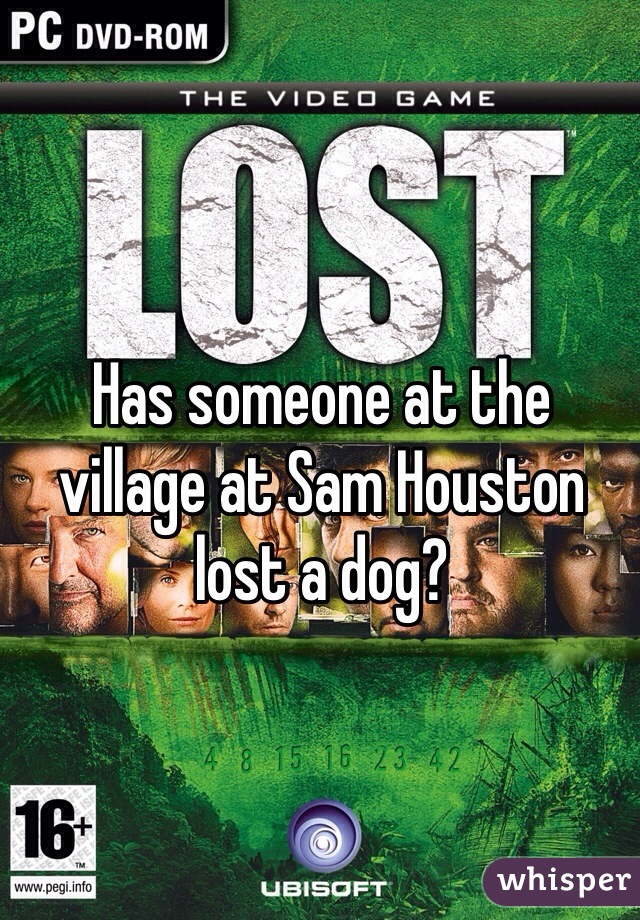 Has someone at the village at Sam Houston lost a dog?