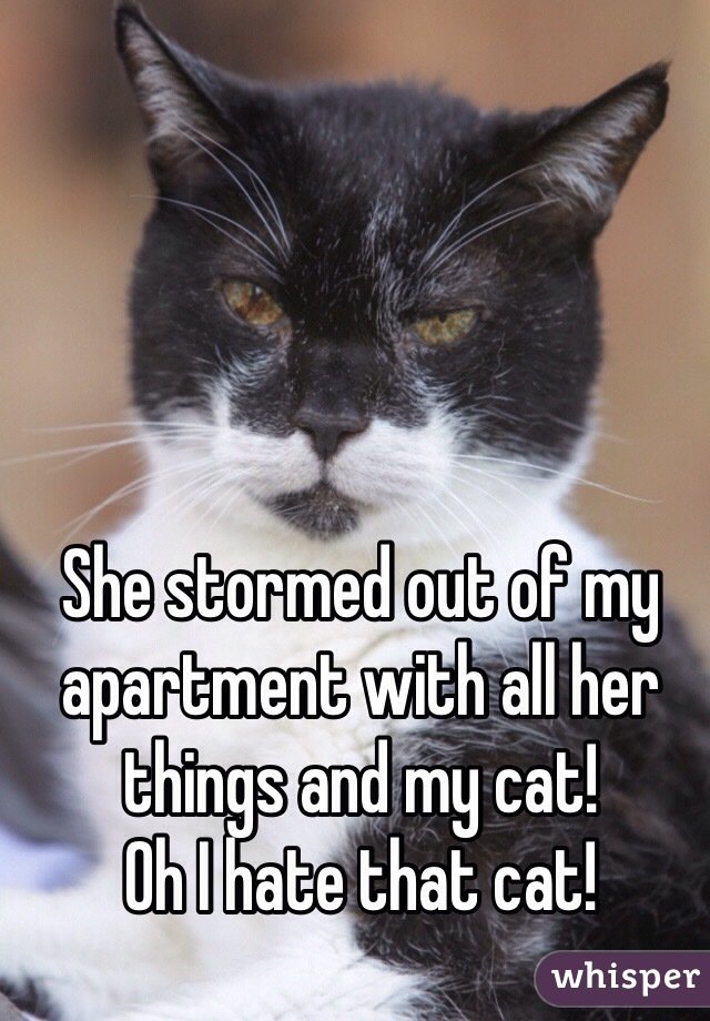She stormed out of my apartment with all her things and my cat! Oh I hate that cat!