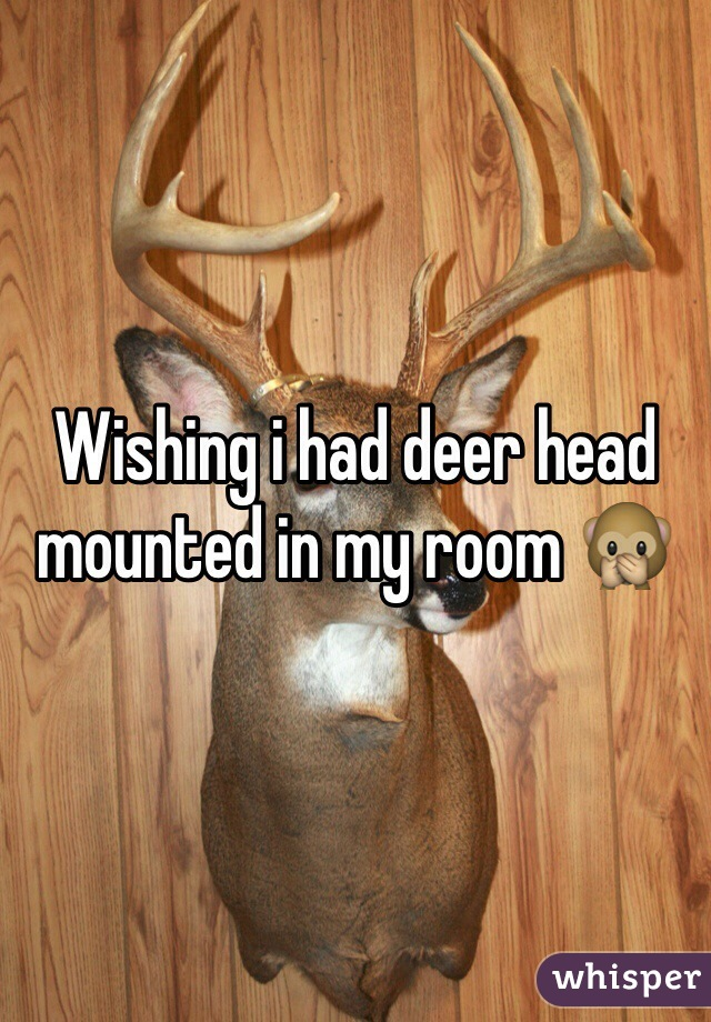 Wishing i had deer head mounted in my room 🙊