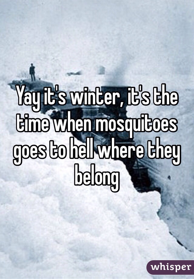 Yay it's winter, it's the time when mosquitoes goes to hell where they belong