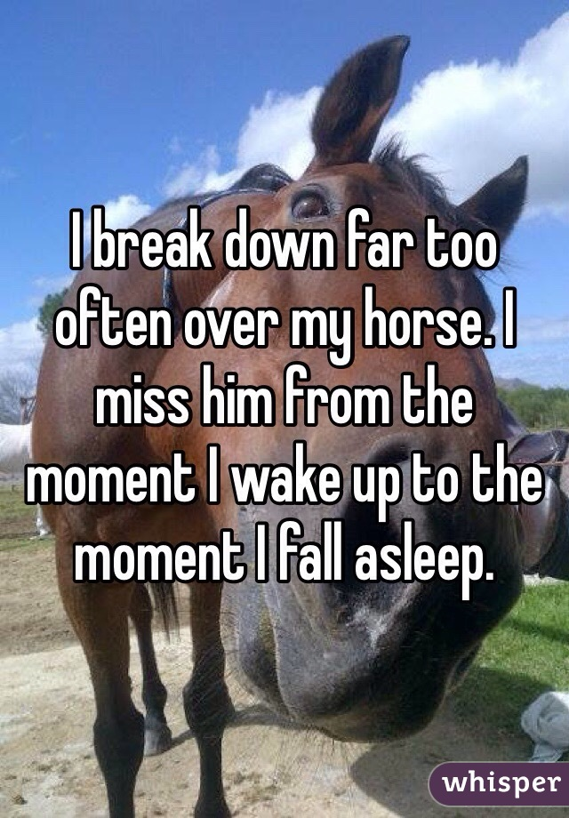 I break down far too often over my horse. I miss him from the moment I wake up to the moment I fall asleep.