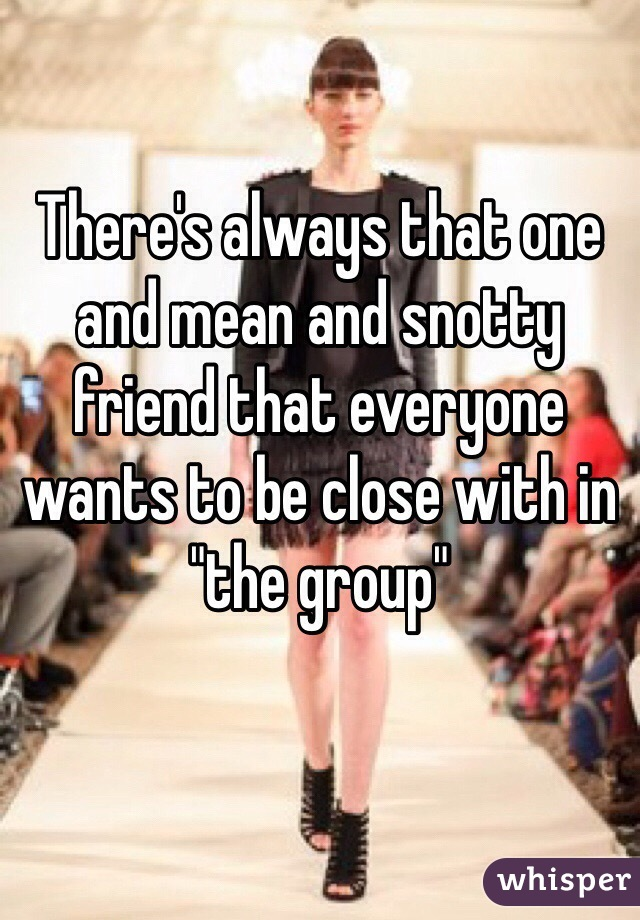 "There's always that one and mean and snotty friend that everyone wants to be close with in ""the group"""