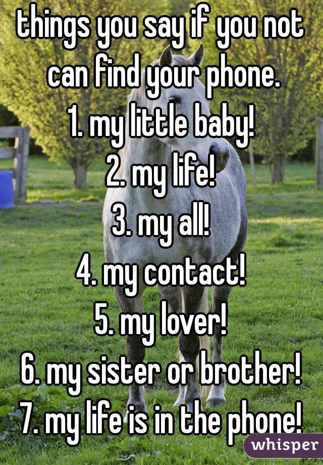 things you say if you not can find your phone. 1. my little baby! 2. my life! 3. my all! 4. my contact! 5. my lover! 6. my sister or brother! 7. my life is in the phone!