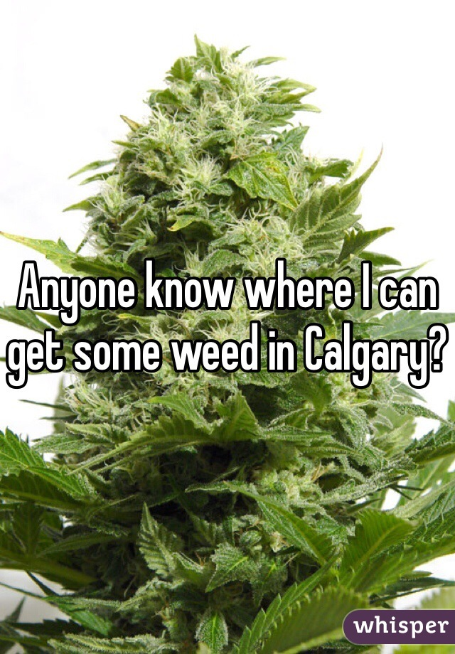 Anyone know where I can get some weed in Calgary?