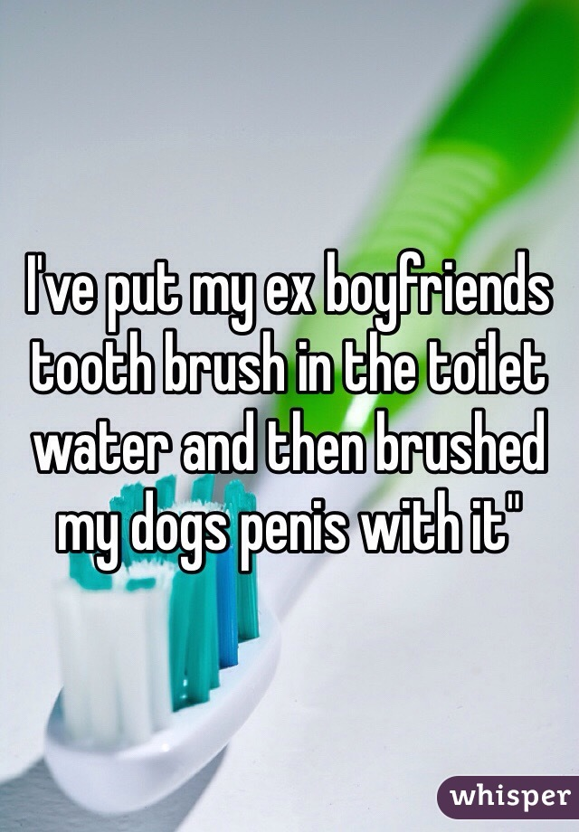 I've put my ex boyfriends tooth brush in the toilet water and then brushed my dogs penis with it""