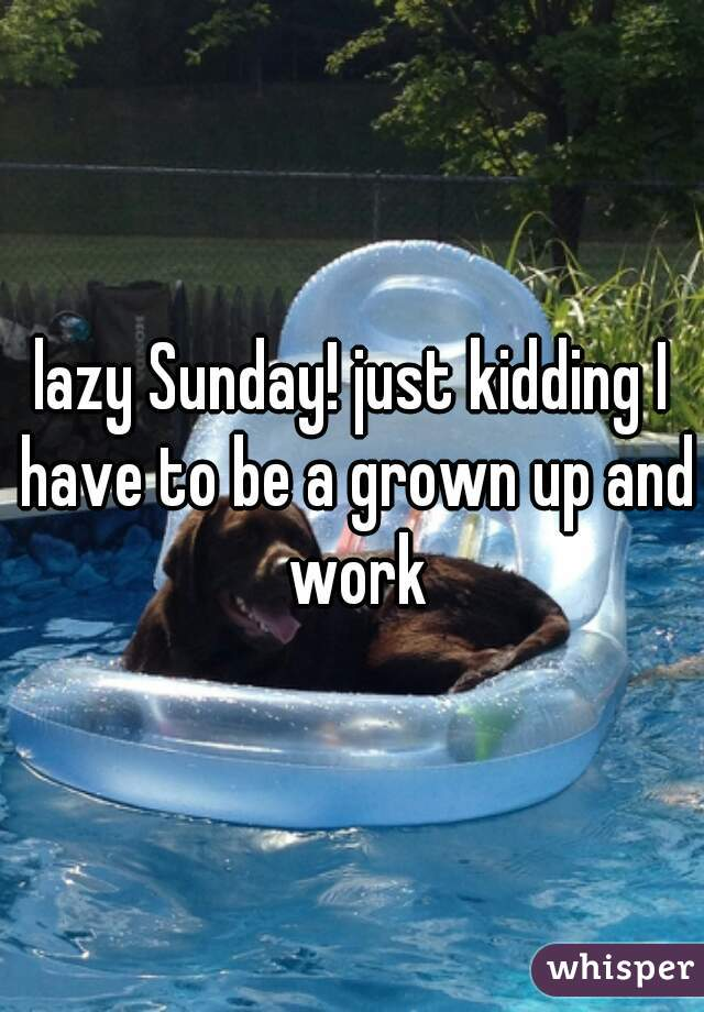 lazy Sunday! just kidding I have to be a grown up and work
