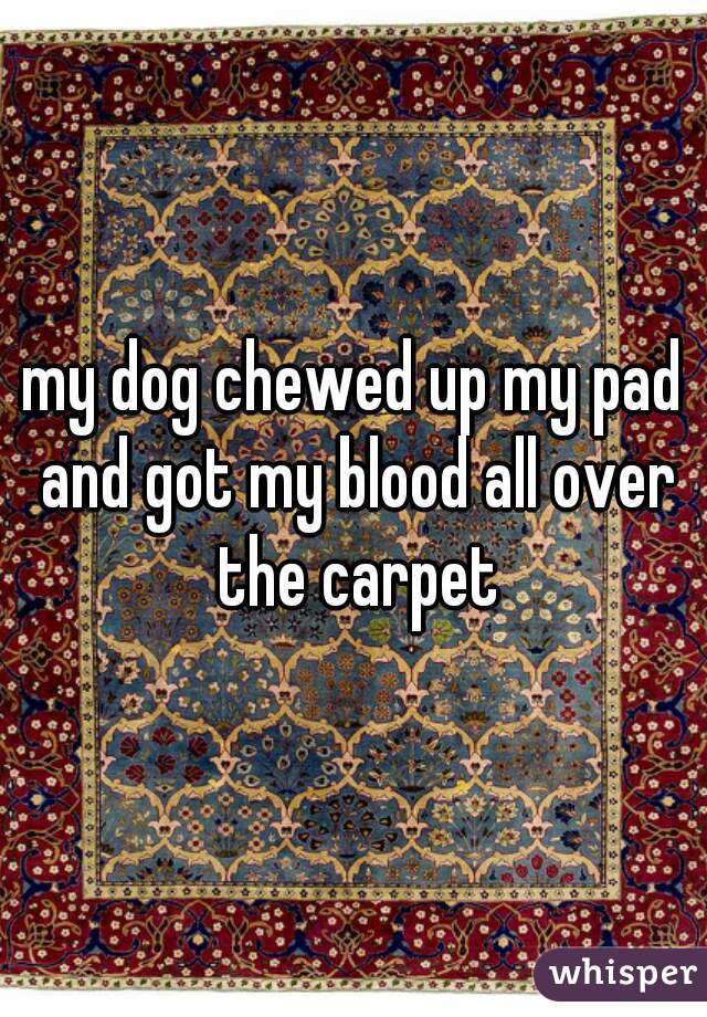 my dog chewed up my pad and got my blood all over the carpet