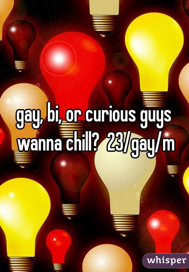 gay, bi, or curious guys wanna chill?  23/gay/m