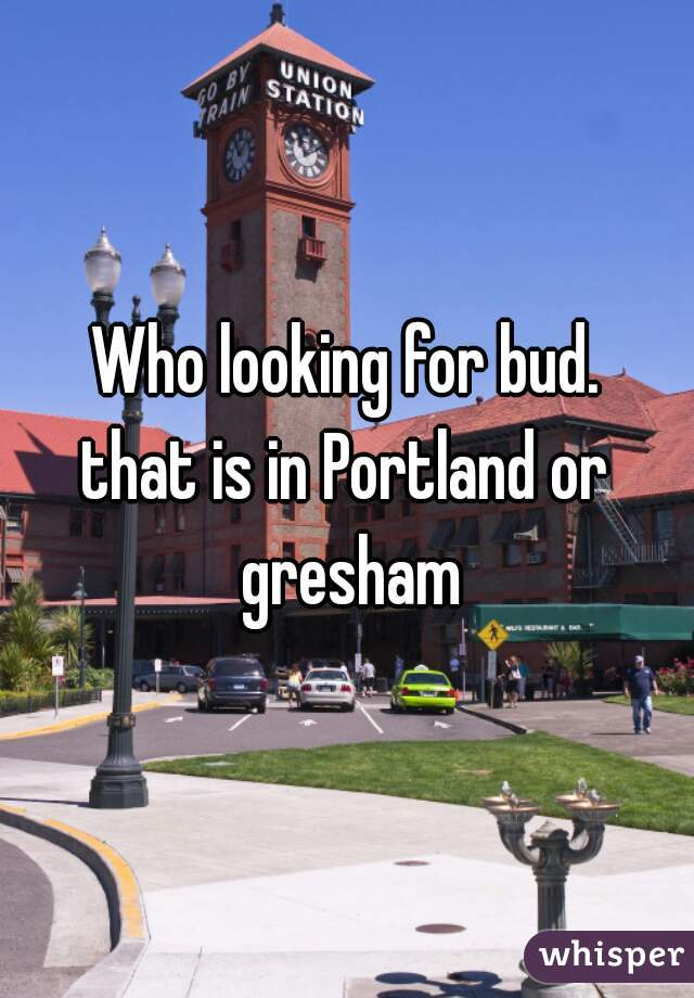 Who looking for bud. that is in Portland or gresham