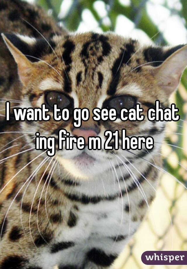 I want to go see cat chat ing fire m 21 here