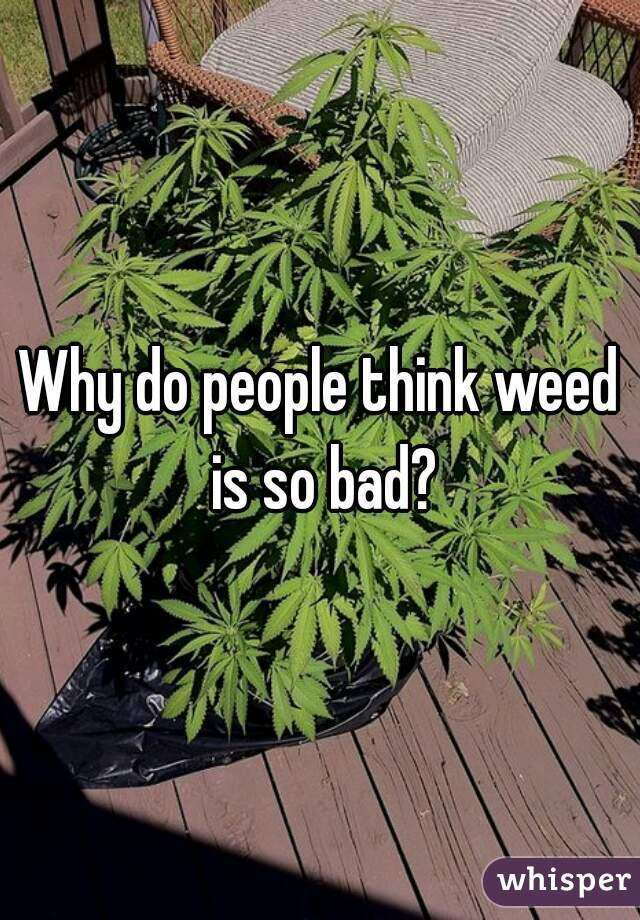 Why do people think weed is so bad?