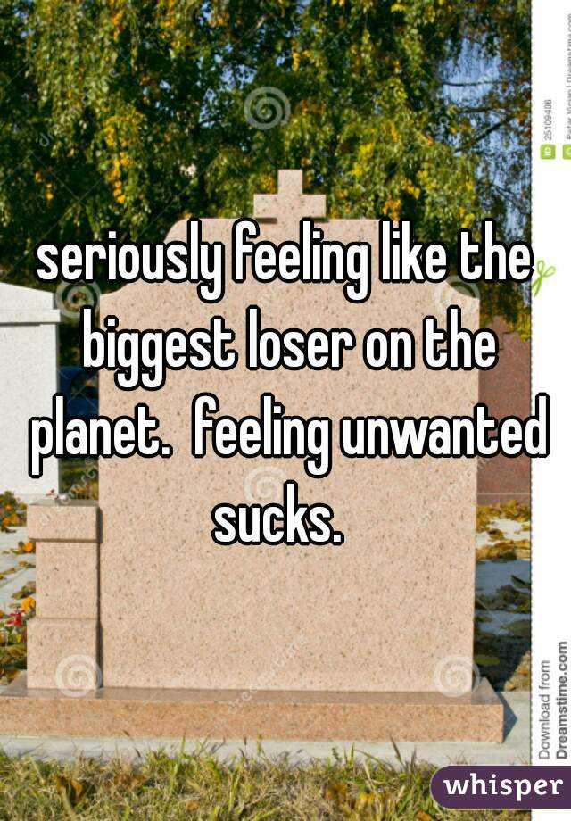 seriously feeling like the biggest loser on the planet.  feeling unwanted sucks.