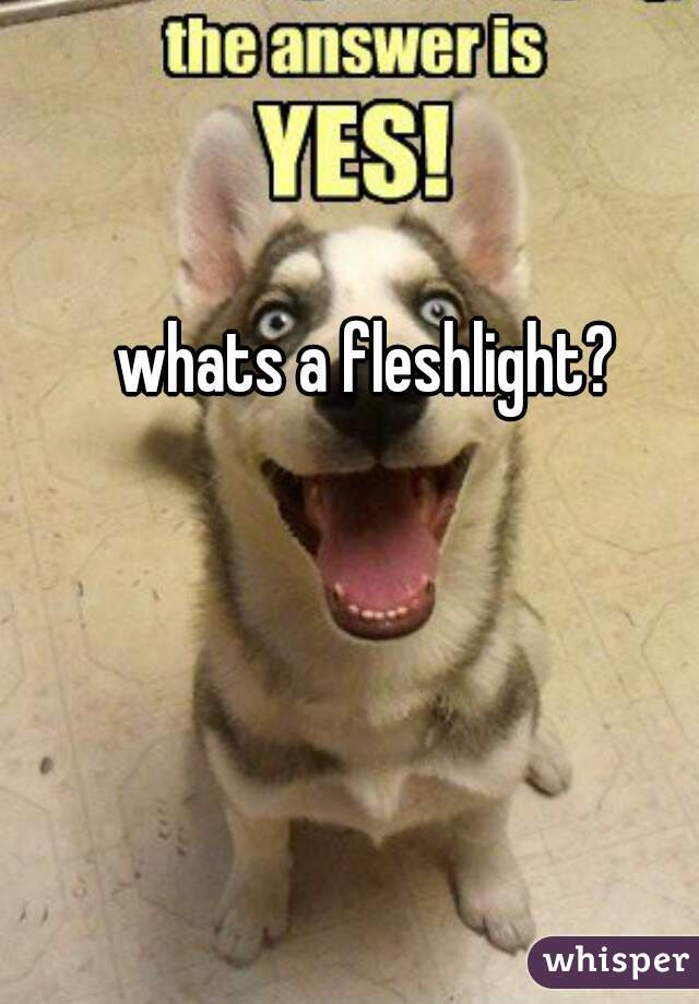 Whats A Fleshlight?