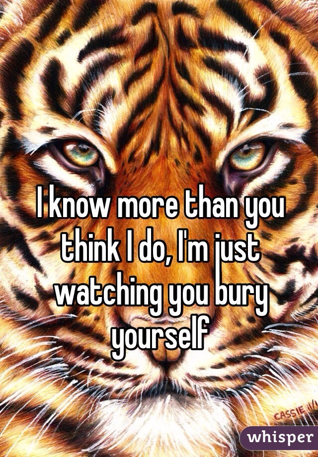 I know more than you think I do, I'm just watching you bury yourself