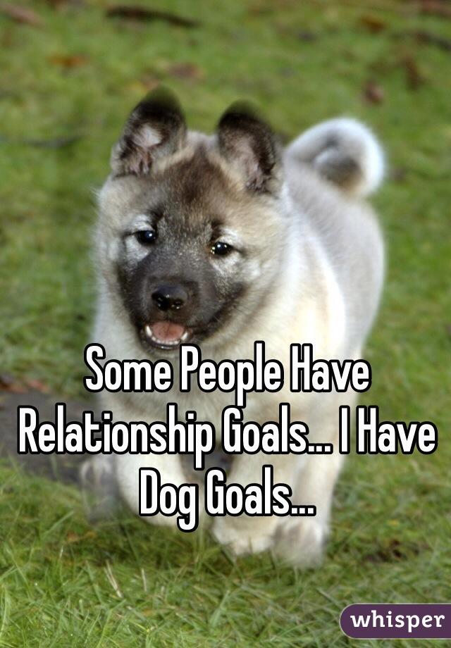 Some People Have Relationship Goals... I Have Dog Goals...