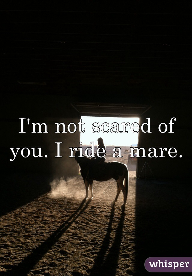 I'm not scared of you. I ride a mare.