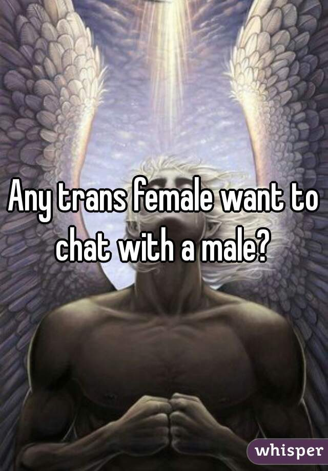 Any trans female want to chat with a male?