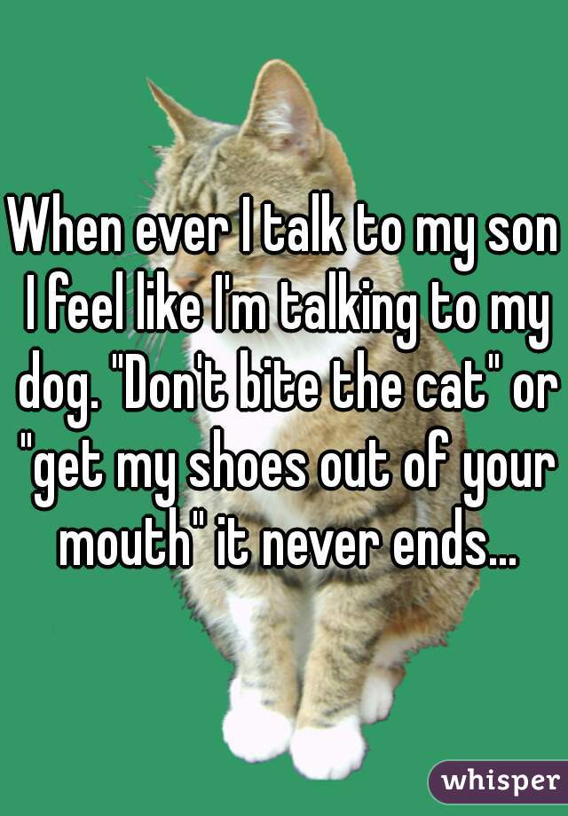 """When ever I talk to my son I feel like I'm talking to my dog. """"Don't bite the cat"""" or """"get my shoes out of your mouth"""" it never ends..."""