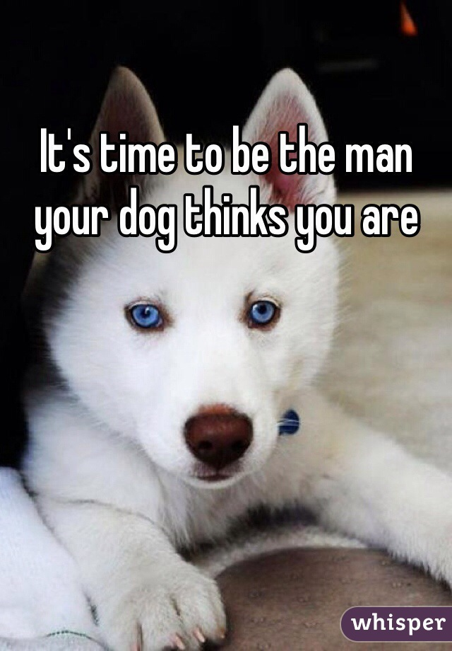 It's time to be the man your dog thinks you are