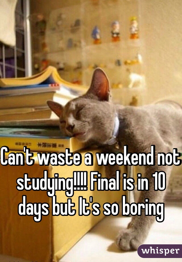 Can't waste a weekend not studying!!!! Final is in 10 days but It's so boring