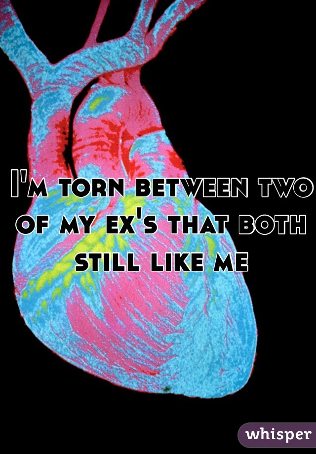 I'm torn between two of my ex's that both still like me
