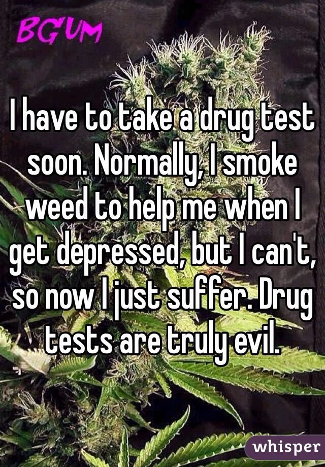 I have to take a drug test soon. Normally, I smoke weed to help me when I get depressed, but I can't, so now I just suffer. Drug tests are truly evil.