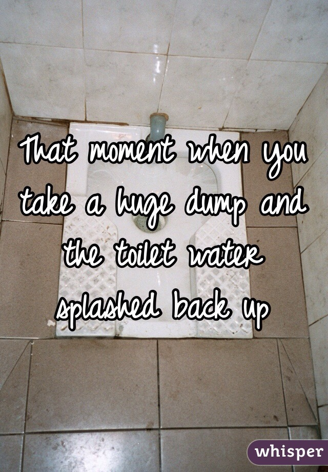 That moment when you take a huge dump and the toilet water splashed back up