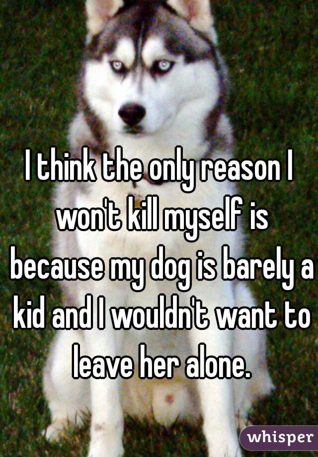 I think the only reason I won't kill myself is because my dog is barely a kid and I wouldn't want to leave her alone.