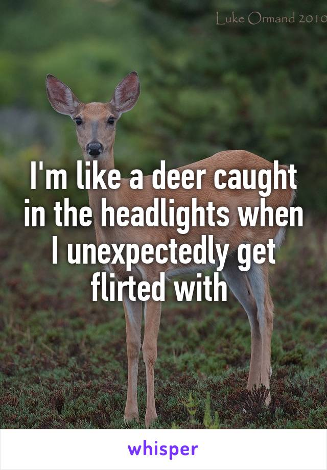 I'm like a deer caught in the headlights when I unexpectedly get flirted with