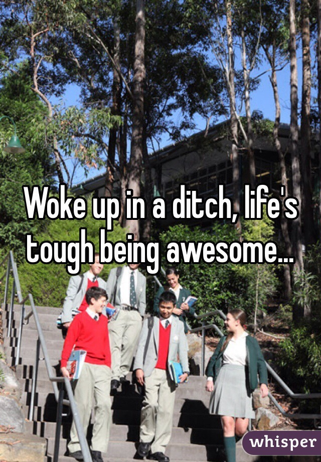 Woke up in a ditch, life's tough being awesome...