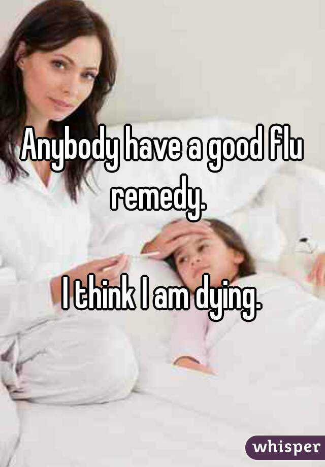 Anybody have a good flu remedy.    I think I am dying.