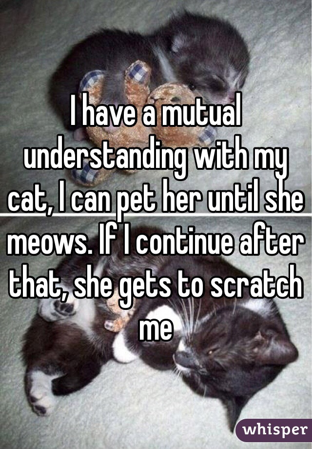 I have a mutual understanding with my cat, I can pet her until she meows. If I continue after that, she gets to scratch me