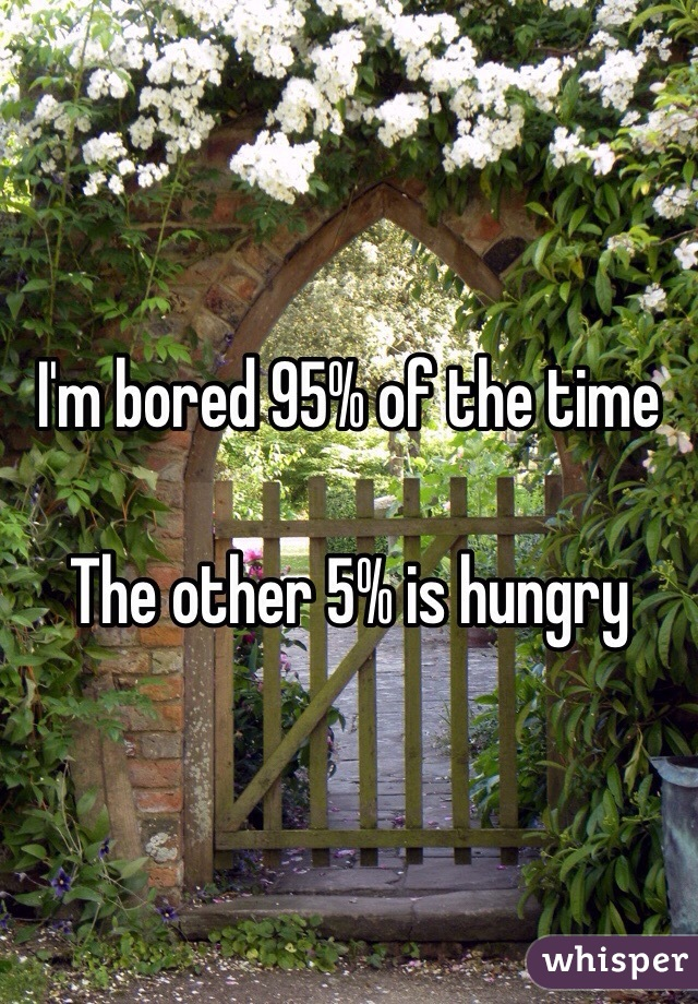 I'm bored 95% of the time  The other 5% is hungry