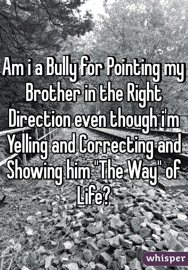 """Am i a Bully for Pointing my Brother in the Right Direction even though i'm Yelling and Correcting and Showing him """"The Way"""" of Life?"""