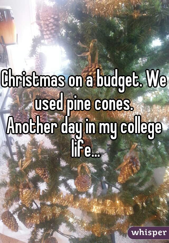 Christmas on a budget. We used pine cones.  Another day in my college life...