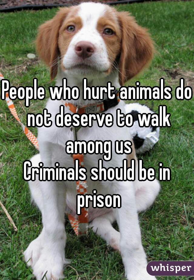 People who hurt animals do not deserve to walk among us Criminals should be in prison
