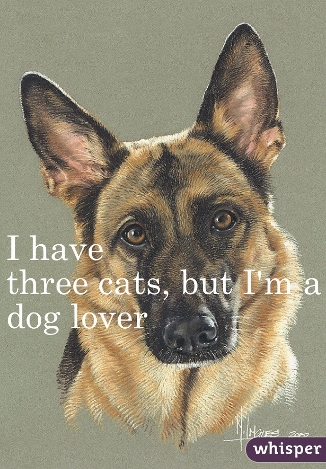 I have three cats, but I'm a dog lover