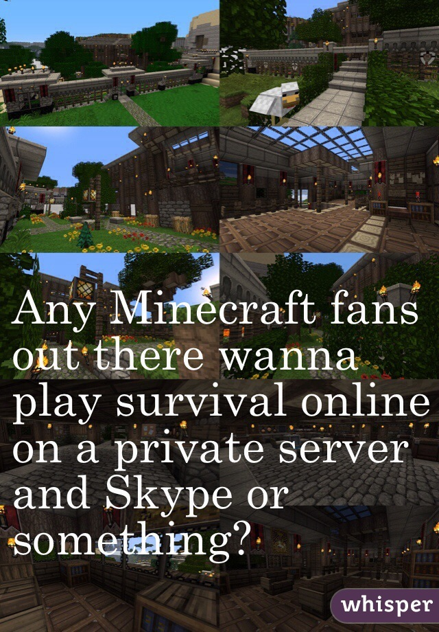 Any Minecraft fans  out there wanna  play survival online  on a private server  and Skype or  something?