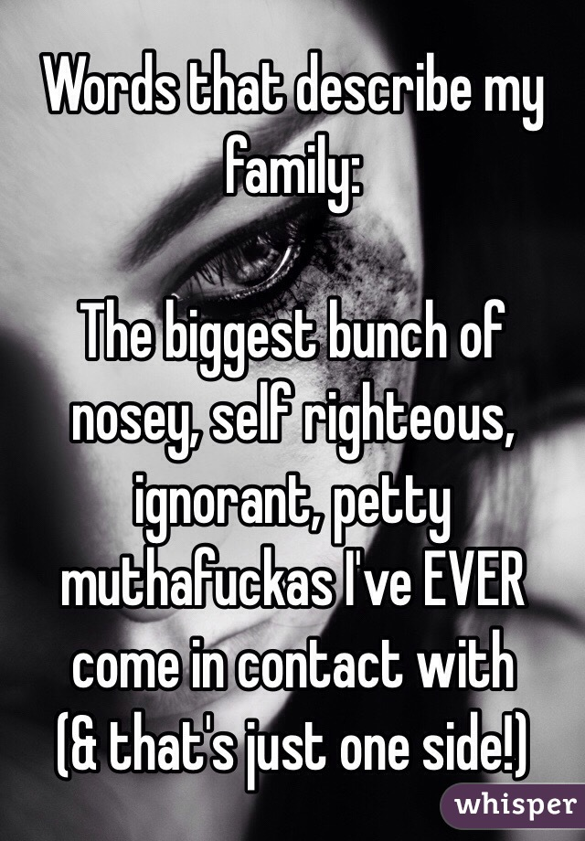 Words that describe my family:  The biggest bunch of nosey, self righteous, ignorant, petty muthafuckas I've EVER come in contact with (& that's just one side!)