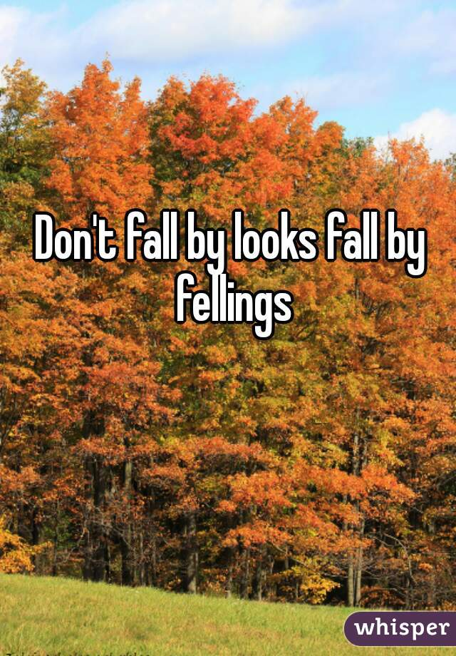 Don't fall by looks fall by fellings
