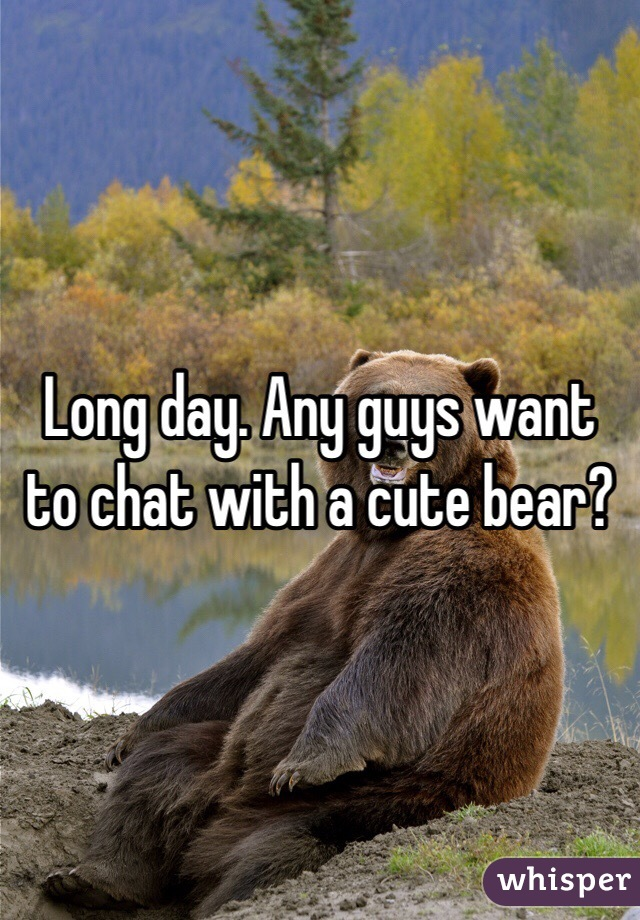 Long day. Any guys want to chat with a cute bear?