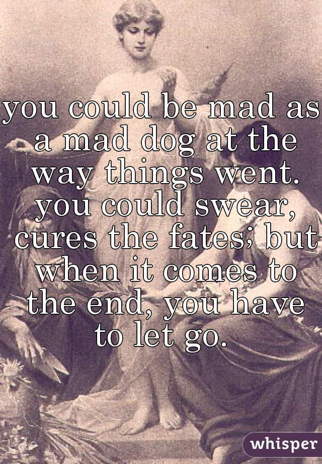 you could be mad as a mad dog at the way things went. you could swear, cures the fates; but when it comes to the end, you have to let go.