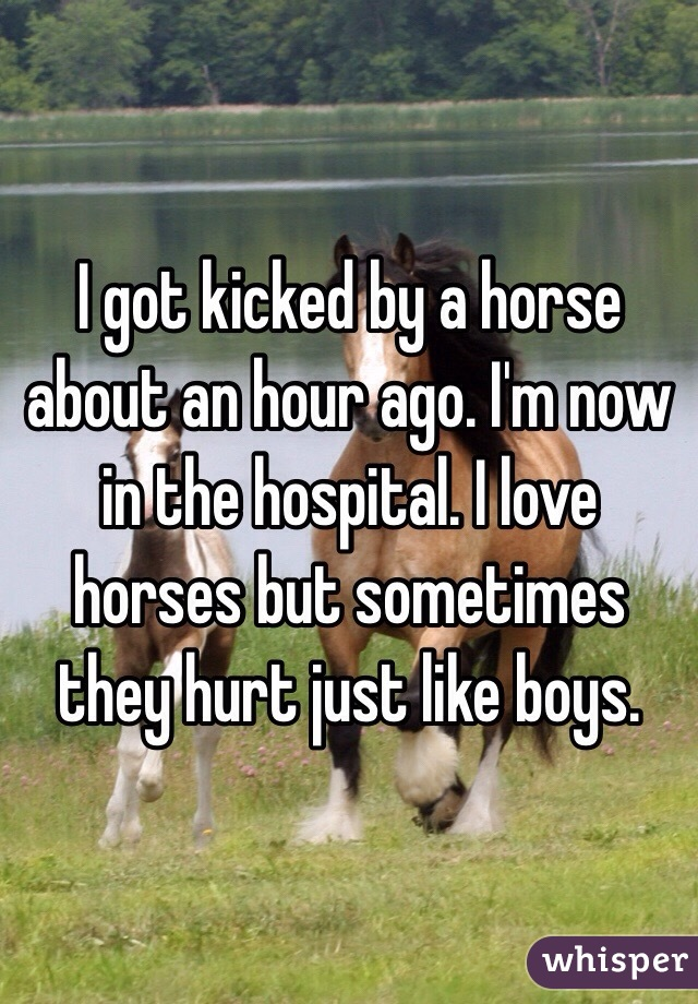 I got kicked by a horse about an hour ago. I'm now in the hospital. I love horses but sometimes they hurt just like boys.