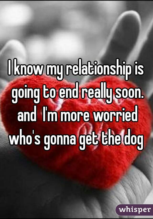 I know my relationship is going to end really soon. and  I'm more worried who's gonna get the dog