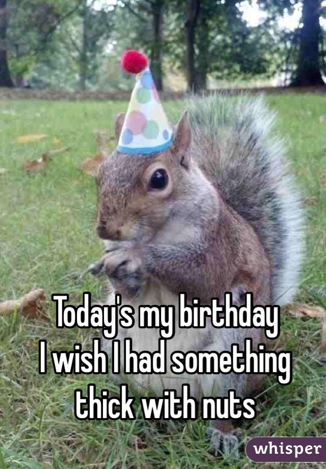 Today's my birthday  I wish I had something thick with nuts