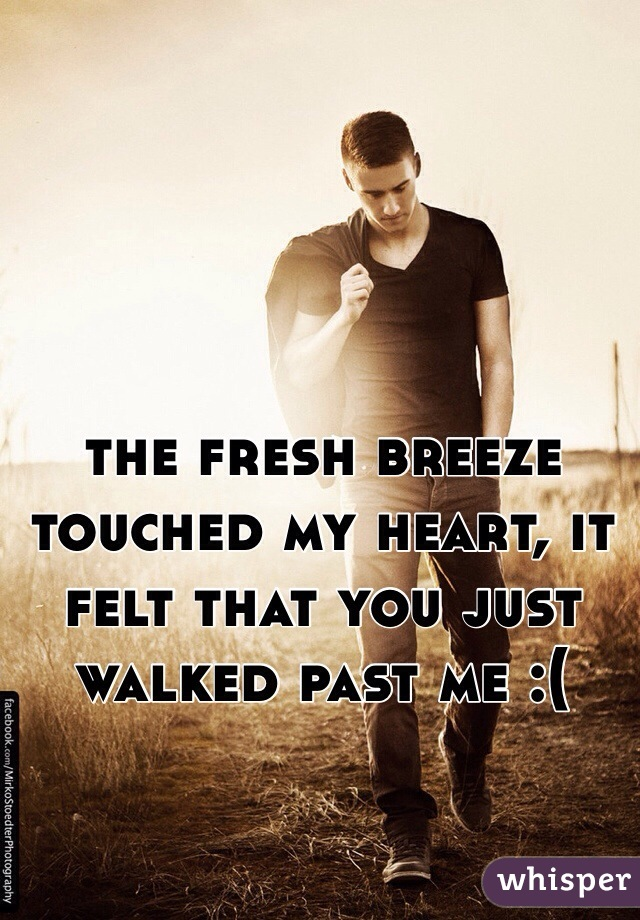 the fresh breeze touched my heart, it felt that you just walked past me :(