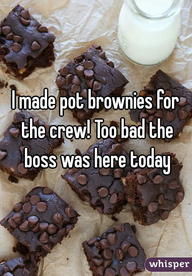 I made pot brownies for the crew! Too bad the boss was here today