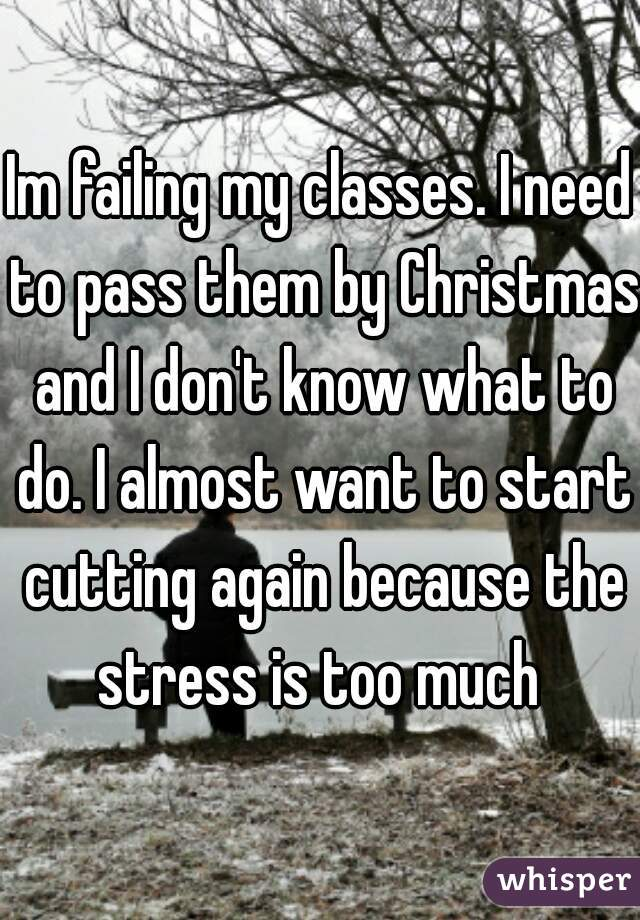 Im failing my classes. I need to pass them by Christmas and I don't know what to do. I almost want to start cutting again because the stress is too much