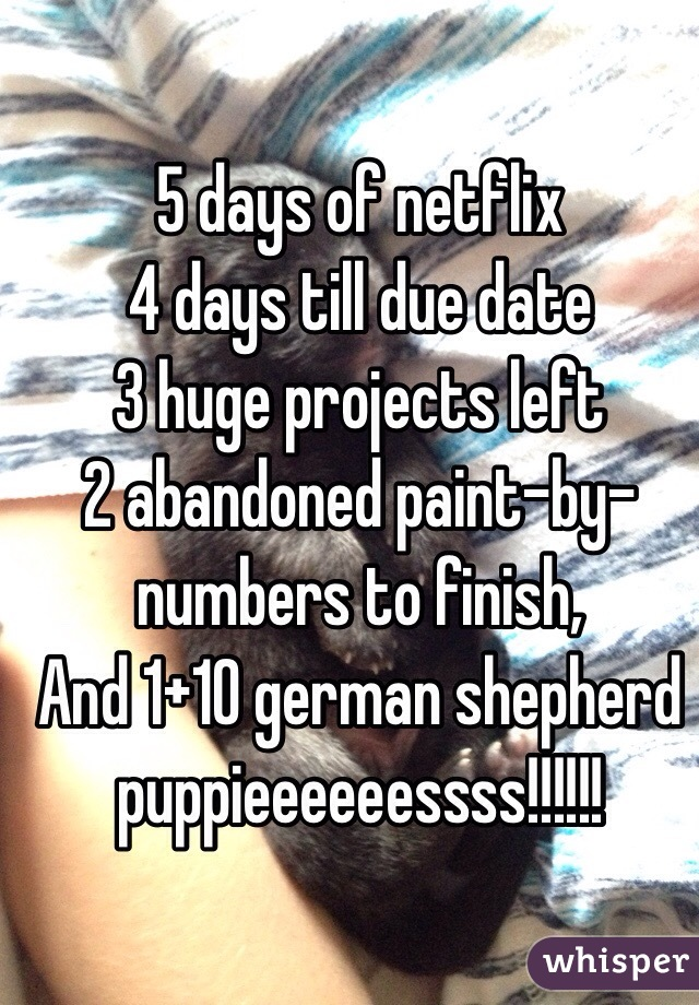 5 days of netflix 4 days till due date 3 huge projects left 2 abandoned ...